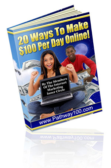 $100 a Day Working Online